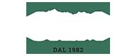 Silm Logo